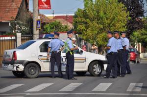 politie votare