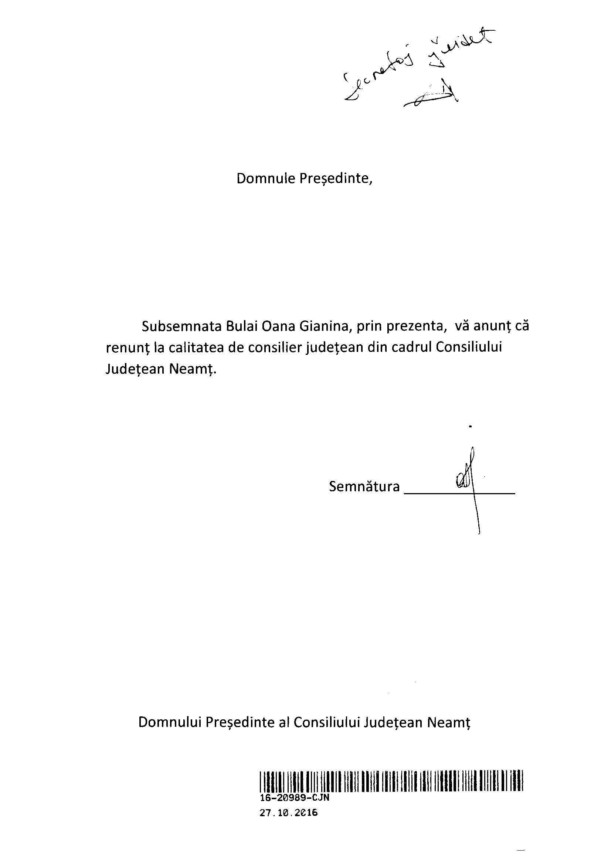 suplimentare-sedinta-cjneamt-31-10-2016_page_04